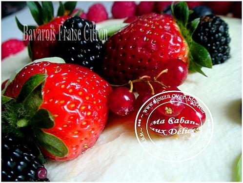 Gâteau bavarois 004
