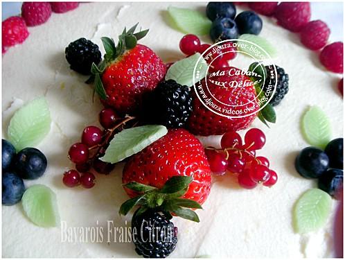 Gâteau bavarois 008