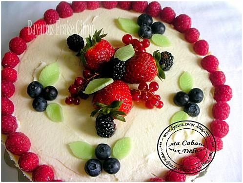 Gâteau bavarois 009