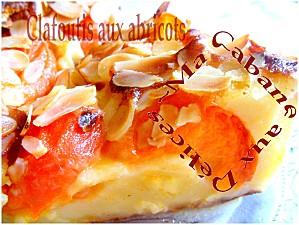 Clafoutis aux abricots 014