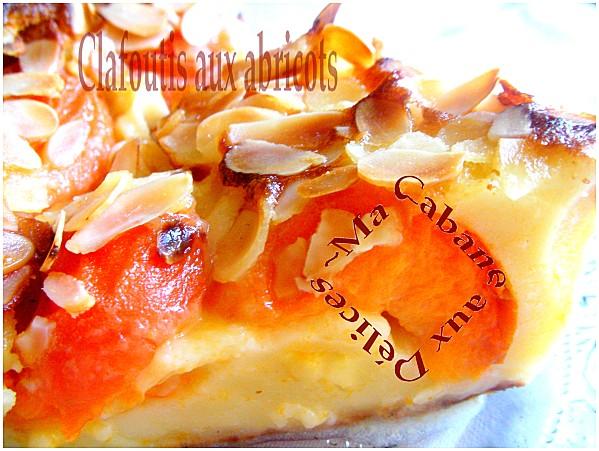 Clafoutis-aux-abricots-014-copie-1.jpg