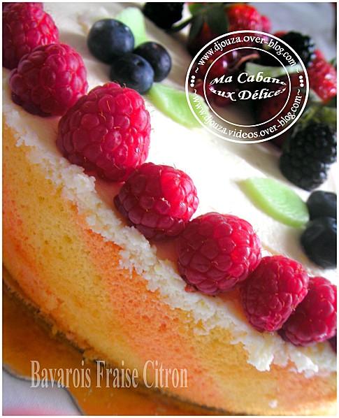 Gâteau bavarois 007