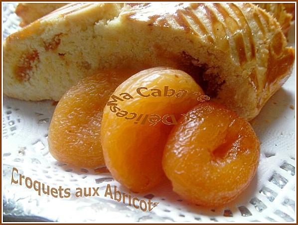 croquets aux abricots 014