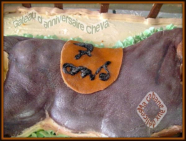 Gâteau d'anniversaire cheval 009-1