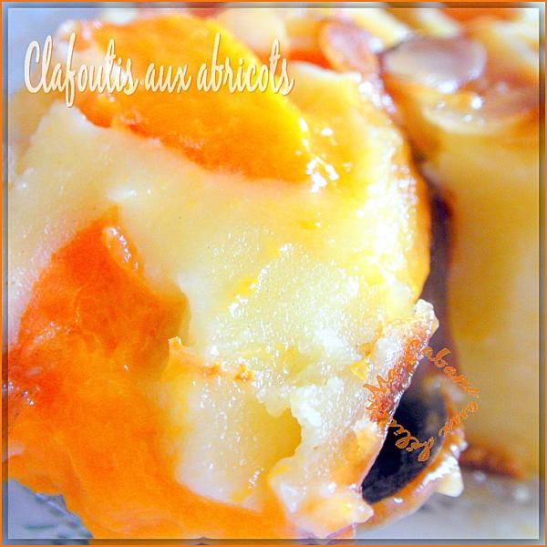 Clafoutis aux abricots photo 2