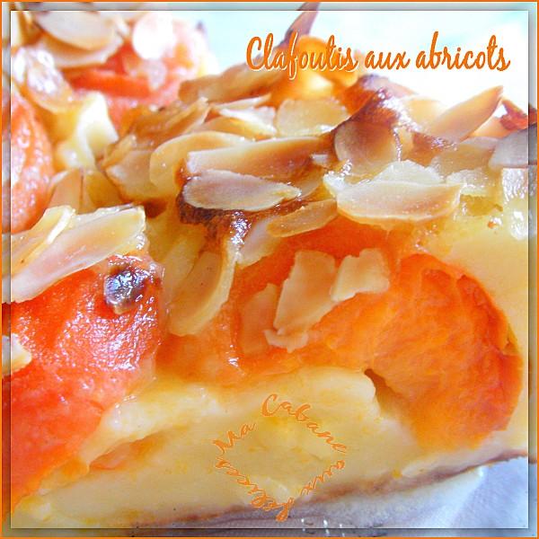 clafoutis aux abricots photo 1