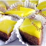 gateau-sans-cuisson-001-copie-1