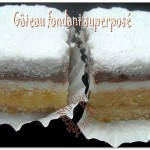 Gateau-fondant-superpose-photo-5