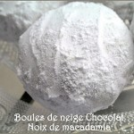Biscuits-chocolat-noix-de-macadamia-photo-3