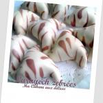 Larayech-zebre-photo-1