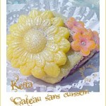 Kefta-gateau-sans-cuisson-photo-2