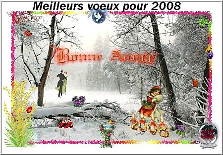voeux_2008_snowy