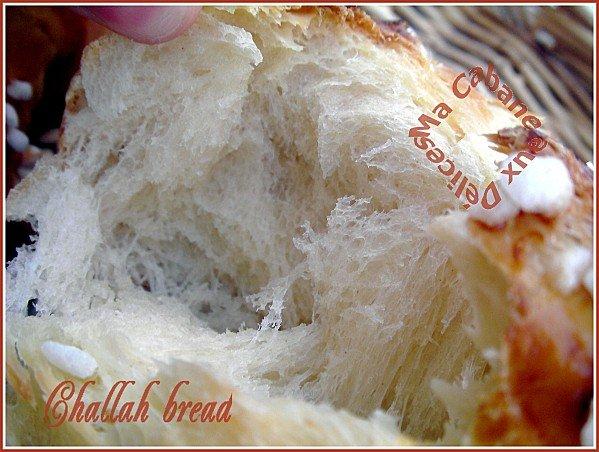 Challah bread 007