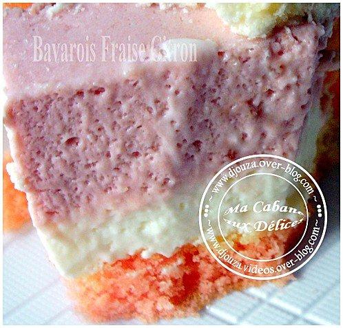 Gâteau bavarois 024