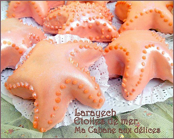 Larayech-etoiles-de-mer-photo-photo-5-copie-1.jpg