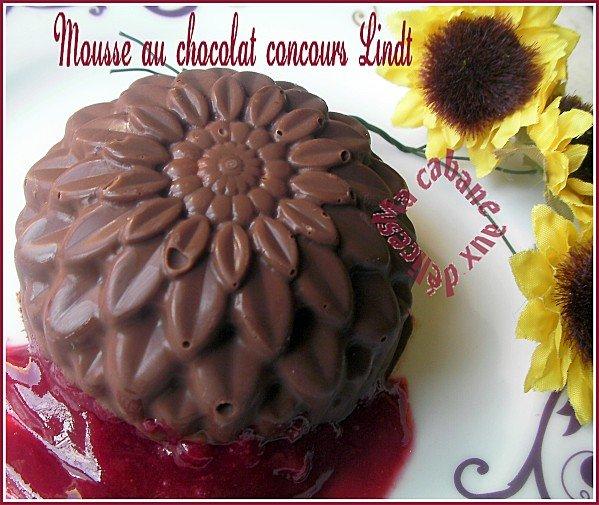 Mousse au chocolat concours Lindt 020