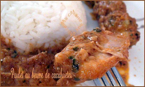 Poulet au beurre de cacahuètes photo 1