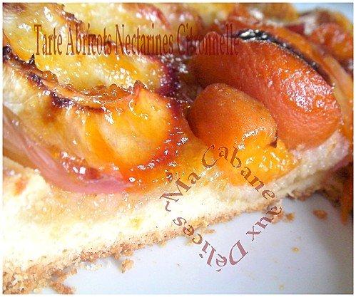 Tartes abricots nectarines 012