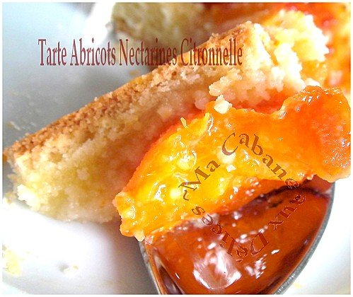 Tartes abricots nectarines 016