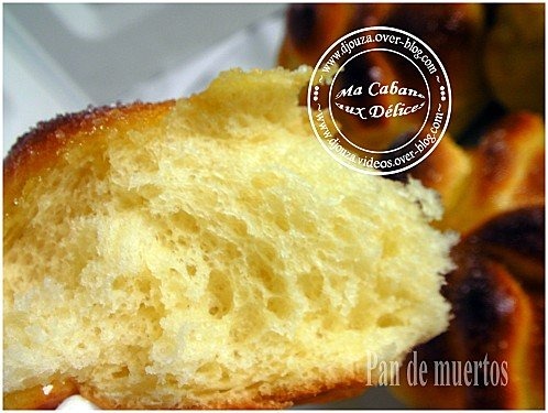 brioche mexicaine 038