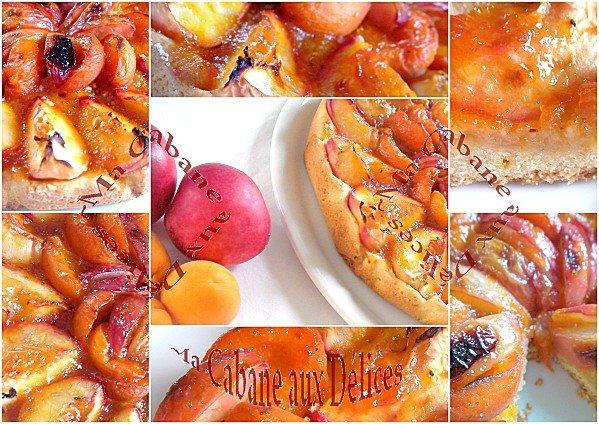 tartes abricots nectarine montage