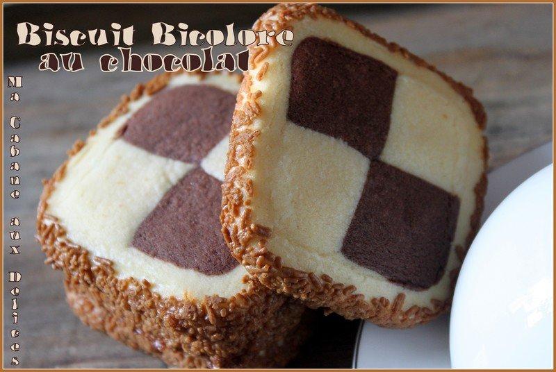 Biscuit bicolore chocolat damier