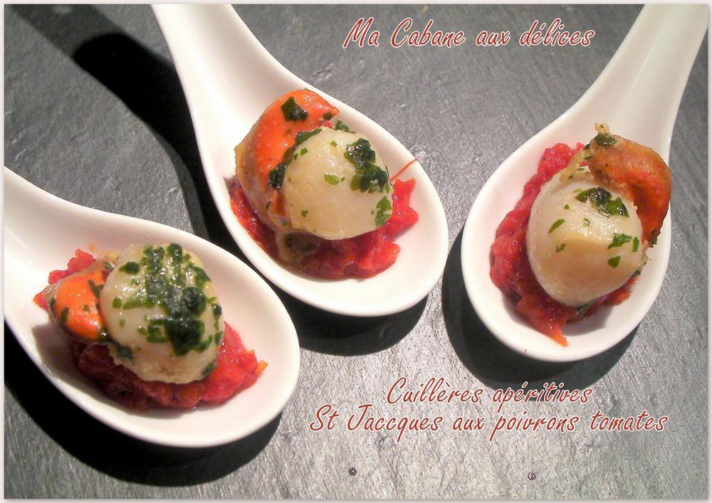 Cuillere aperitive noix de st jacques recettes faciles recettes rapides de djouza - Petites cuilleres aperitives pour apero sympa ...