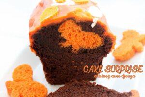 Cake surprise papillon au chocolat