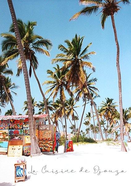 les caraïbes, cuba et république dominicaine