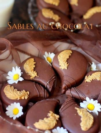 biscuits gourmands au chocolat
